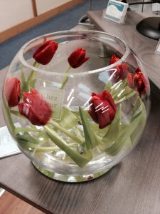 Tulip fishbowl