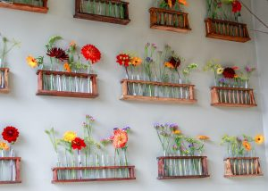 Test tube racks with seasonal British flowers