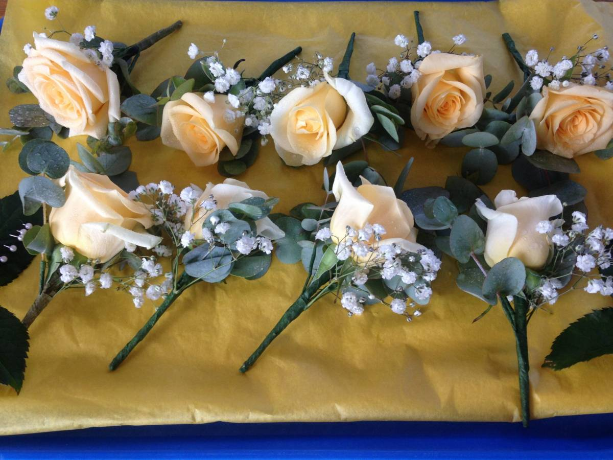 rose & gypsophila with eucalyptus cinerea buttonholes wedding